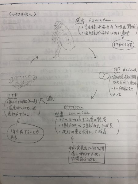 IMG_5853
