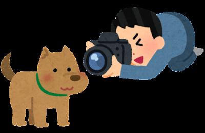 camera_dog (1)