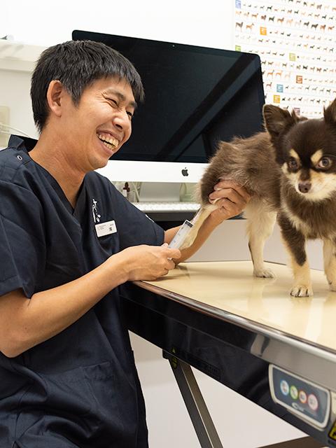 動物 病院 やぐら